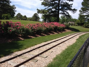 A miniature train named the Rotary Express provides children and adults rides through the beautiful Village Park in Kannapolis.