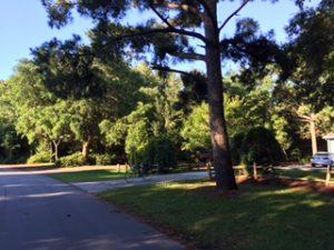street scene, pine knoll shores, nc