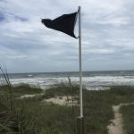 black flag on beach